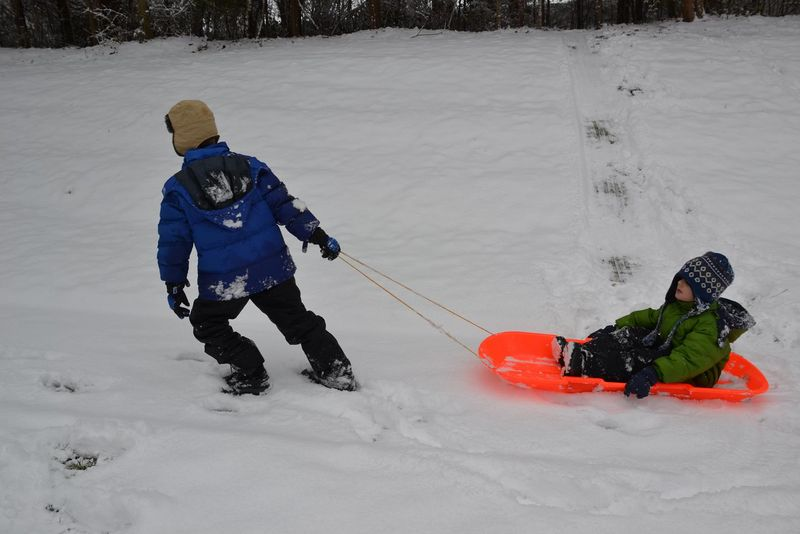 Pulling the sled