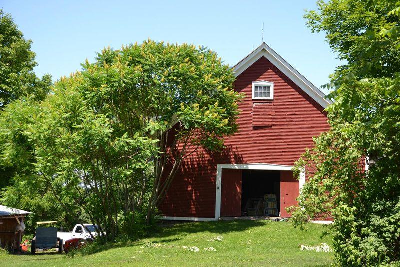Elmer farm